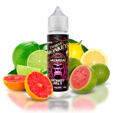 White Eliquid - ANARCHIST...