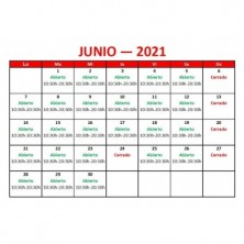 Blueberry 100ml (BOOSTER) -...